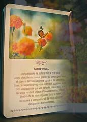 aimez vous (Chocolatine photos) Tags: fleur papillon livre doubleexpo stilllife flickr nikon