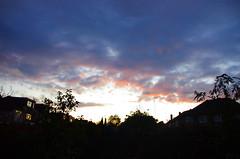 IMGP5564 (Steve Guess) Tags: chessington surrey greater london england gb uk sky cloud