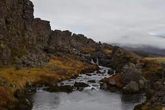 DSC_0043 (reetta.tilli) Tags: iceland þingvellir thingvellir october autumn national park nature bláskógabyggð