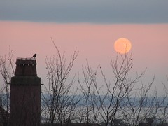 Watching the Wolf Moon (cazjane97) Tags: january wolfmoon moon chimney sea eastbourne h