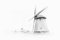 Wind of Change? (W_von_S) Tags: windmills windmühlen blackwhite schwarzweis monochrome monochrom netherlands niederlande wind highkey impression wvons werner sony a700 holland
