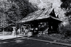 Starting 2020 (Matthias Harbers) Tags: nagareyama chiba japan canan 2020 newyear shrine shinto dxo photoshop topazlabs bw black white blackandwhite