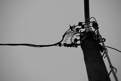 (Mikko Luntiala) Tags: blackandwhite bw finland grey helsinki december gray 2019 d600 harmaa mustavalkoinen joulukuu nikond600 mikkoluntiala sky suomi taivas tamronsp70200mmf28divcusdg2 lightpost lightpole valotolppa