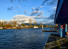 Pitt Meadows Marina/ South Arm Alouette River (SonjaPetersonPh♡tography) Tags: pittmeadows pittmeadowsmarina bc canada britishcolumbia pittriver southarmalouetteriver alouetteriverdykestrail marina nikon nikond5300 nikonafsdxnikkor18300mmf3556gedvr blackwhite boats moored dock waterscape landscape viewpoint views scenic scenery river water clouds sky dykes pittriverdykes moorage gasbar