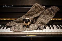 Taktvoll in das Wochenende (Sockenhummel) Tags: handarbeitensabine socken socks strümpfe stricken knitting handgestrickt schaf musik sahummel andreas socktober klavier tasten schwarzweis kirche kapelle rudow