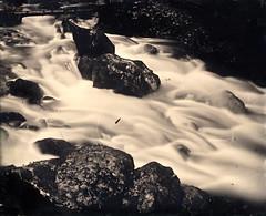 Source de l'Allondon, pays de Gex († Nicolas Blind †) Tags: collodion wet plate alternative process wetplatecollodion ambrotype nature landscape france paysdegex paysage gex