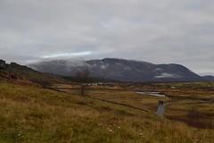 DSC_0039 (reetta.tilli) Tags: iceland þingvellir thingvellir october autumn national park nature bláskógabyggð