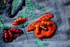 Fancy (JULIANA LEFTEROVA) Tags: smileonsaturday beads closeup texture embroidery decoration fashion jeansdecoration abstract jeansfabric stilllife