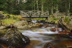 lac de Suyen (hautes pyrenees) (oliv340) Tags: pyrenees hautespyrenees occitanie sudouest france lacdesuyen montagne nature landscape longueexposition longexposure midipyrenees paysage photography river riviere