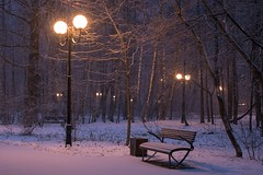 Snowy morning in the park (dardashew) Tags: winter morning snow park trees january moscow russia lantern bench ivanovskypark lights dardashew dmitryardashev ambient snowfall colors