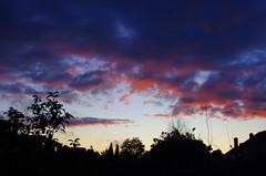 IMGP5563 (Steve Guess) Tags: chessington surrey greater london england gb uk sky cloud