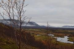 DSC_0031 (reetta.tilli) Tags: iceland þingvellir thingvellir october autumn national park nature bláskógabyggð