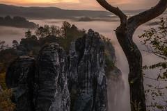 Morning Touch (Rafael Zenon Wagner) Tags: saxonswitzerland sächsischeschweiz sachsen saxony germany nikon d810 sigma 40mm sonnenaufgang sunrise
