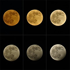 Phases of the Penumubral Lunar Eclipse, Wolf Moon, January 2020. Rising to climax. (Epiphany Appleseed) Tags: wolfmoon penumbrallunareclipse penumbral lunarscape lunareclipse lunareclipselondon 2020 january wolfmoon2020 wolfmoonuk fullmoon fullmoonuk wolf moon mooninlondon astro astronomy asrtophysics lunar solar system science space cosmos