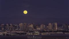 Ready to Howl (ihikesandiego) Tags: wolf moon full san diego cuyamaca peak sunset city