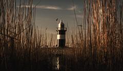 Wremen Leuchtturm (Wencke Reinhardt) Tags: leuchtturm ausszeit deutschland germany grass schönes wetter winter wallpaper leinwand poster