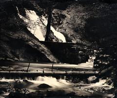 Source de l'Allondon, pays de Gex († Nicolas Blind †) Tags: collodion wet plate alternative process wetplatecollodion ambrotype nature landscape france gex paysdegex paysage
