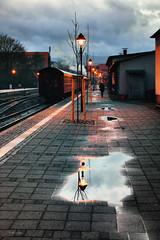 Station2 (r.wacknitz) Tags: harzerschmalspurbahnen hsb wernigerode harzmountains harz saxonyanhalt rainy wintermood puddle reflexion reflection light nikond5600 tamron18200 lightroom