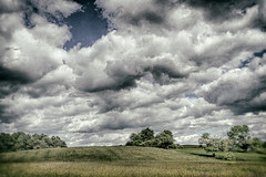 Winter dream of a summer meadow (FotoFloridian) Tags: agriculture beautyinnature cloudsky cloudscape field grass greencolor land meadow newyork nonurbanscene outdoors ruralscene scenics season sony summer tree a6400 alpha blue landscape nature sky