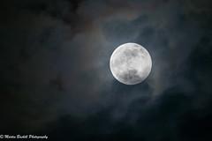 Wolf Moon Jan 2020 🌜🌝🌙🌜 (martin.baskill) Tags: 10040014extendermk111 canon 5dmk4 moon wolf wolfmoon 2020 january clouds nottinghamshire england