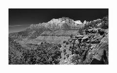 Zion National Park (Joe Franklin Photography) Tags: almostanything zionnationalpark utah ut southwest desert landscape nationalpark monochrome blackandwhite