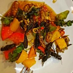 Bugs cafè (Eric Borda) Tags: cambodge kambodscha cambodia cambogia siemreap ericborda ristorante restaurant bugs insetti សៀមរាប siemrab កម្ពុជា kampouchea cibo food bugscafè