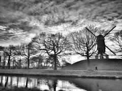 En attendant le vent.... (lucrabco) Tags: belgique moulin arbres silence lumière ciel monochromephotographie monochrome noiretblancphotographie noiretblanc blackandwhitephotography blackandwhite