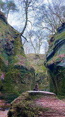 The devils pulpit (carys.morrison.x@hotmail.co.uk) Tags: trees rock scenery pulpit iphone iphone11pro green miss moss
