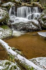 Lohnbachfall - untere Stufe mit Baum (AnBind) Tags: ausflug niederösterreich waldviertel lohn 2019 lohnbachfall naturdenkmal