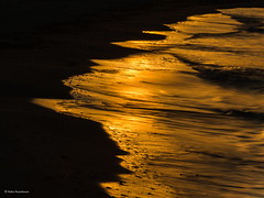 Liquid Gold (He Ro.) Tags: fischlanddarsszingst strand wasser reflektion reflection sonnenuntergang sunset beach zingst mecklenburgvorpommern deutschland germany ostsee sea detail minimalist balticsea water nature seascape sand