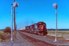 Highball Alford (C.P. Kirkie) Tags: alford oregon southernpacific sp sporegondivision spbrooklynsubdivision willamettevalley emd sd40t2 intermodal trains railroads railway signal