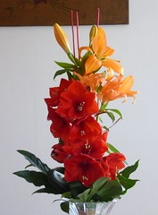 un bouquet de fêtes - (surlesailesdumonde) Tags: truecolor fleurs bouquet amarillys lys
