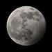 'Wolf' Moon