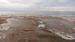 L'Estany (1) (calafellvalo) Tags: calafell estany rierada comú carteles censura torrente agua grabados aves historia walter invierno calafellvalo