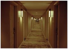 Baltimore 03 (misu_1975) Tags: baltimore hotel marriottwaterfrontbaltimore 35mm kodak portra 400iso hallway g2 contaxg2 f2 night