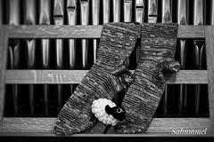 Wir pfeifen auf kalte Füße (Sockenhummel) Tags: handarbeitensabine socken strümpfe socks stricken knitting handgestrickt schaf sheep orgel pfeifen orgelpfeifen notenständer sw schwarzweis blackwhite monochrom kirche church kapelle rudow socktober andreas musik