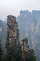 Towers and Trees (ttarpd) Tags: republic china republicofchina world travel zhangjiajie national forest park unesco global geopark wulingyuanscenicarea wulingyuan scenic zhangjiajiesandstonepeakforestnationalgeopark sandstone peak hunan province towering pillar pillars quartzsandstone landscape