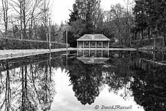 Photo of Waterlogged