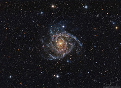 Illusive Galaxy IC342 (Terry Hancock www.downunderobservatory.com) Tags: universe universetoday nasa astro sky space astronomy astrophotography astroimaging skywatcher qhy qhyccd qhy163m grandmesaobservatory colorado westernslopes cosmos
