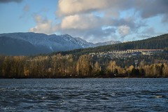 Pitt River/ Pitt River Dykes Trail (SonjaPetersonPh♡tography) Tags: pittmeadows britishcolumbia bc canada nikond5300 nikonafsdxnikkor18300mmf3556gedvr nikkor waterscape landscape blueskies pittriver mountainview portcoquitlam scenic scenery river views viewpoint subdivision homes hillside community city mountainlandscape mountainside mountainpeaks