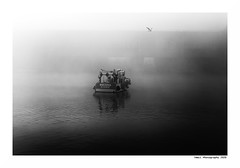 """""""Dans Les Traces Du Poulpe Ou Pour L'Attendrir Faut Taper Desssus... 33"""" (TBWLC Photography) Tags: fdrouet tbwlc nb bw monochrome brume myst port ship boat bateau saintnazaire penhoët nikon d750"""