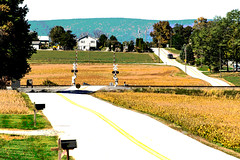 19-7637-p4 (George Hamlin) Tags: pennsylvania lees crossroads farm country posterized roads railroad grade crossing signal crossbucks brown green blue mailboxes trees leading lines fine art photography photodecor george hamlin