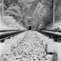 Volataile worm's-eye view / Ulotność żabiej perspektywy (Piotr Skiba) Tags: bytom rails stones infrared ir tlr 6x6 square rolleiir400 summer landscape city poland pl piotrskiba seagull4a