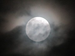Cloudy Full Moon 11/1/20 (Gary Chatterton 8 million Views) Tags: fullmoon themoon cloudy moonlight moonshot sky night naturalsatellite luna darkness flickr canonpowershotsx430 photography space theuniverse solarsystem