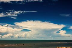 Stormcloud (Markus Branse) Tags: beach lee point darwin northern territory austral australia aussie oz trees strand bäume baum tree sand wasser water see sea meer ocean ozean ozeanien natur nature