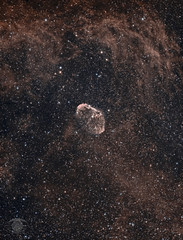 NGC 6888 - The Crescent Nebula (HOO) (Dark Arts Astrophotography) Tags: astrophotography astronomy asi1600mc space sky stars star science dso dsva dark crescent nebula night nature natur nightsky ngc astrometrydotnet:id=nova3866568 astrometrydotnet:status=solved