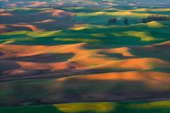 Rolls (jojo (imagesofdream)) Tags: palouse nikon natgeo farmland washington