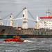 Der Frachter Chong Ming der Reederei CHIPOLBROK - SHANGHAI, CHINA bei der Einfahrt in den Hafen von Klaipeda.