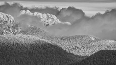 IMGP6058-Edit-2-Edit-Edit.jpg (peter_jdh) Tags: trees bc landscape monochrome snow portcoquitlam mountains blackwhite canada bw k50 pentax clouds