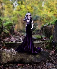 Purple velvet 💜 (pure_embers) Tags: pure embers doll dolls uk pureembers photography laura england fashion royalty toys mizi lindy emberslindy pretty mizidoll lavender pinup portrait purple dress desyshop outside